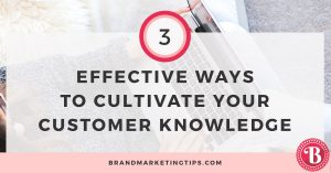 hree Effective and Low Cost Methods to Cultivate Your Customer Knowledge